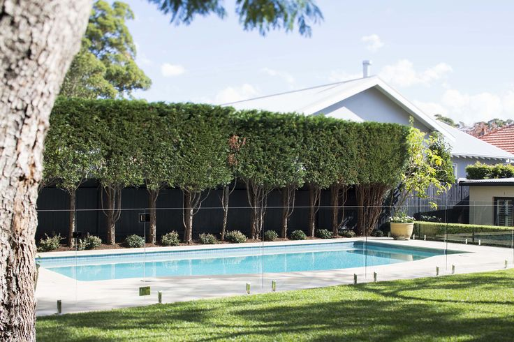 Private lawns and gardens with heated pool at 45 Batemans Road Gladesville