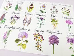 Purple Flower Table Cards