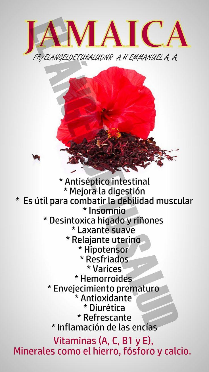BENEFICIOS DE LA JAMAICA #medicinasnaturales