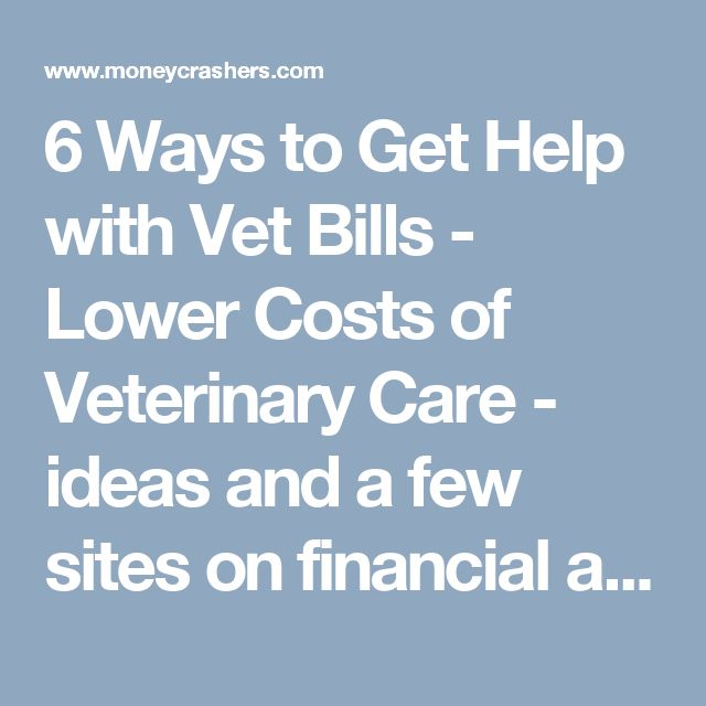 6 Ways to Get Help with Vet Bills - Lower Costs of Veterinary Care - ideas and a few sites on financial aid for pets