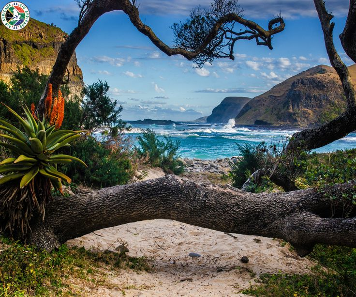 Coffee Bay, South Africa  |  Coffee Bay is a small town situated on the Wild Coast of the Eastern Cape Province of South Africa.  |  Call Us Now: 0203 515 0804  |  #travel #southafrica #coffeebay #airafrica