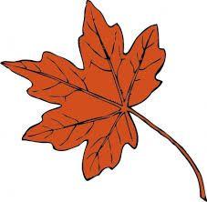 Τάξη αστεράτη: Σχέδιο μαθήματος (φθινόπωρο) - επανάληψη μαθηματικα Α΄τάξης
