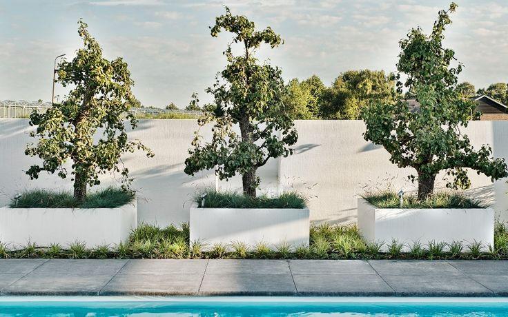 Tuin in Ibiza sfeer met platoflex wanden