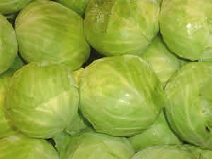Cultured Cabbage Juice...one of the greatest/cheapest probiotics out there