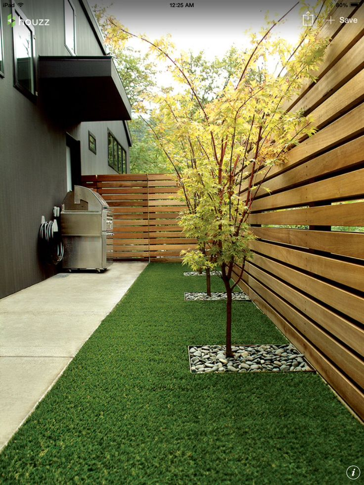 Minimal back yard with wood fencing