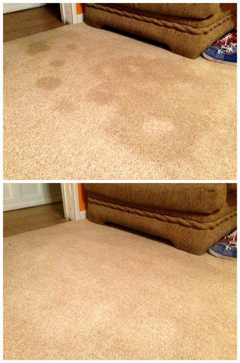 Enlever une vieille tache sur un tapis ou une moquette.