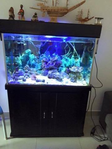 Aquario completo whatssap