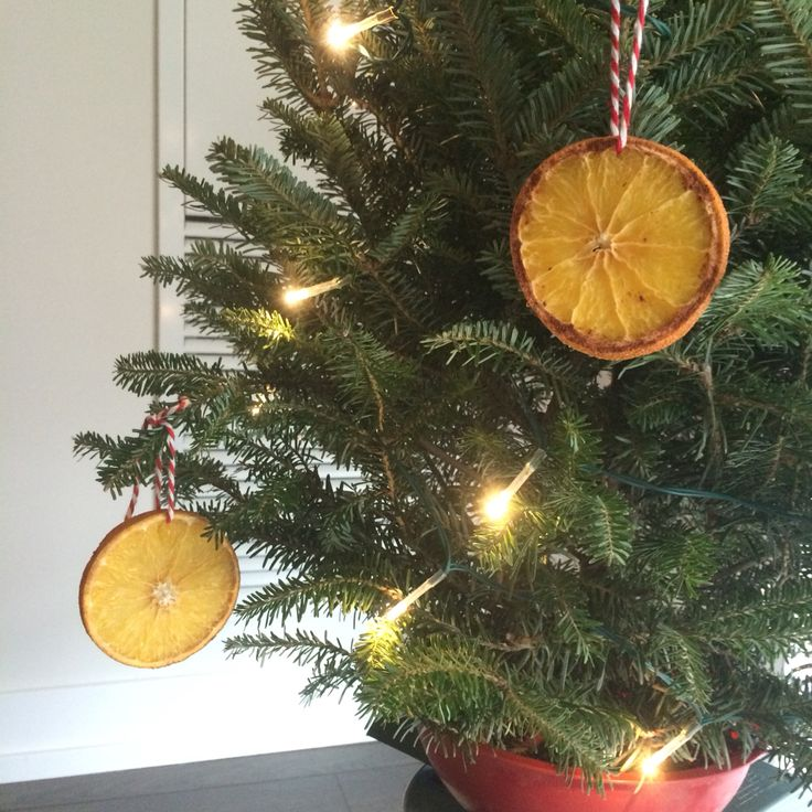 Orange slices make a pretty and fragrant Christmas tree ornament.