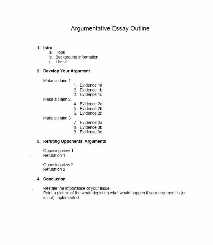 Outline Of Argumentative Essay Sample Google Search Template Persuasive How To Write An