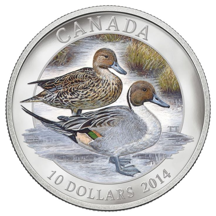 2014 $10 Fine Silver Coin - Pintail Duck