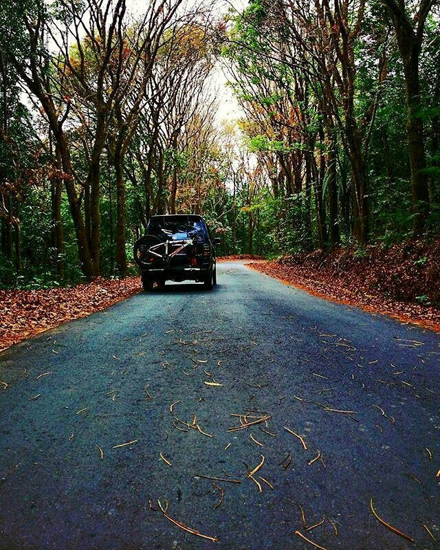 loading ala om @unsulfuadi di daerah sukabumi.. boleh nih jalan buat ngeroad :D  #pacificbikes #pacificbikerider #sepeda #sepedagunung #bersepeda #gowes #sukabumi #mountainbike #mtbindonesia #crosscountry #hardtail #loading #road #trip