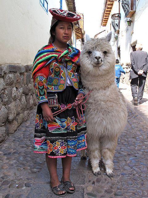 Cuzco (Perú). I hope I get to see a big furry llama like this.