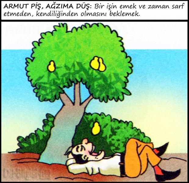Deyim Karikatürleri - Resimli Deyimler | Dil Bilgisi.net