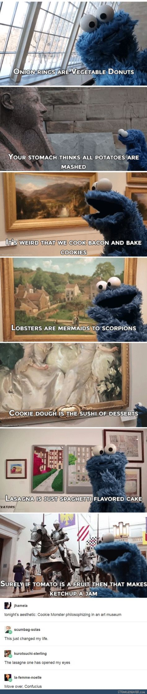 Cookie Monster is deep - Funny tumblr post