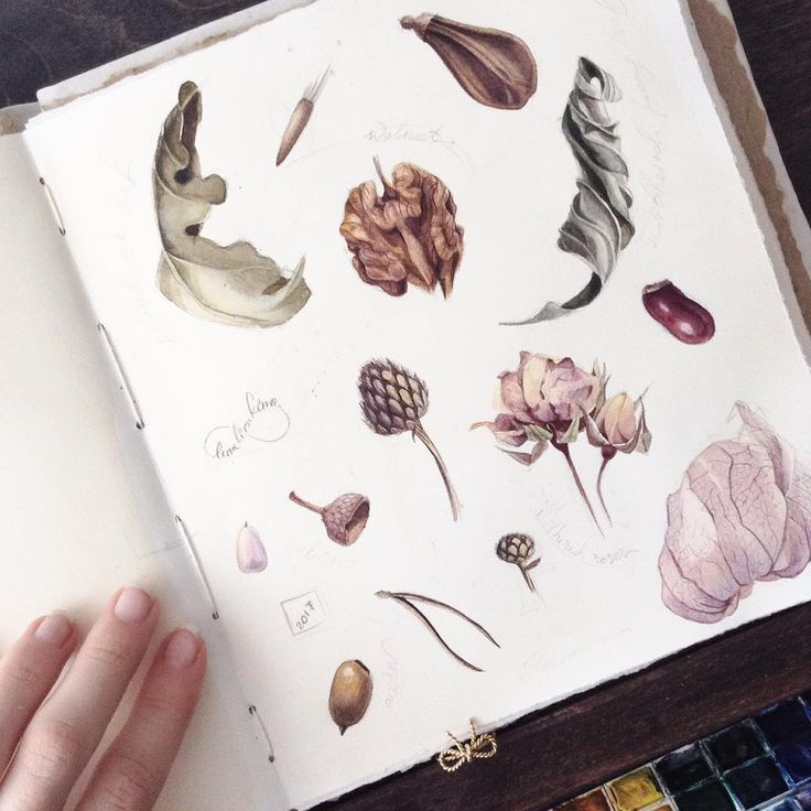 The young Russian artist Elena Limkina reveals the inside of her fascinating sketchbook, where each page contains beautiful drawings in ink or watercolor. A wandering into the world of the artist through her creative diary, where she experiments styles and techniques, moving from architectural drawi