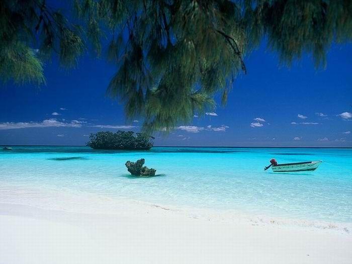 Isola Lifou Nuova Caledonia