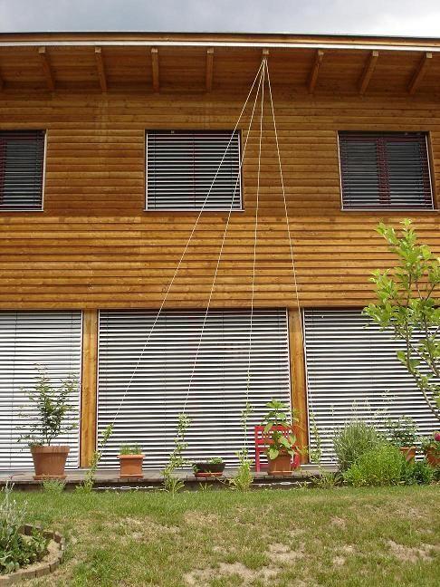 die besten 25 kletterpflanzen ideen auf pinterest blumenreben kletternde blumen und einfache. Black Bedroom Furniture Sets. Home Design Ideas