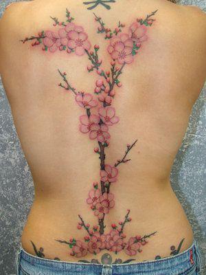 Cherry Blossom: Tattoo Ideas, Flowers Tattoo, Trees Tattoo, A Tattoo, Tattoo Design, Full Back Tattoo, Cherries Blossoms Tattoo, Tribal Tattoo, Cherry Blossoms