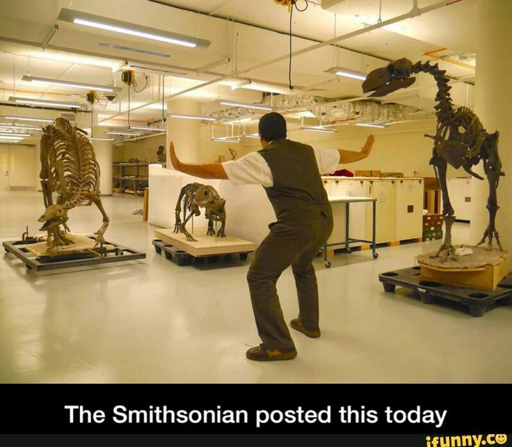 Even the Smithsonian knows how to do the Jurassic World prattkeeping!