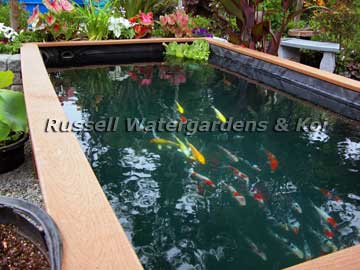 41 best images about koi pond on pinterest summer porch for Fish pond construction ideas