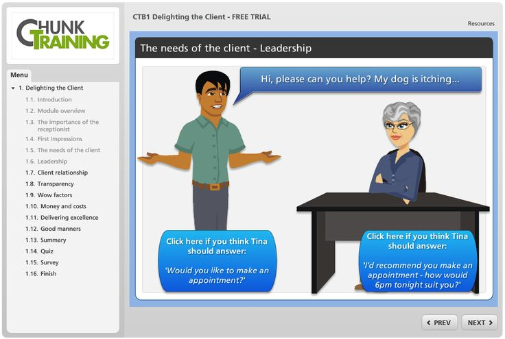 A screenshot from the Chunk Training Delighting the Client' veterinary course module