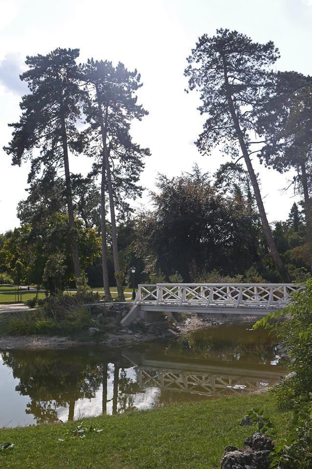#Holzbrücke #Schwanenteich #Festeticskastély #Barockschloss #Feštetićs #Schlosspark #Keszthely #Ungarn
