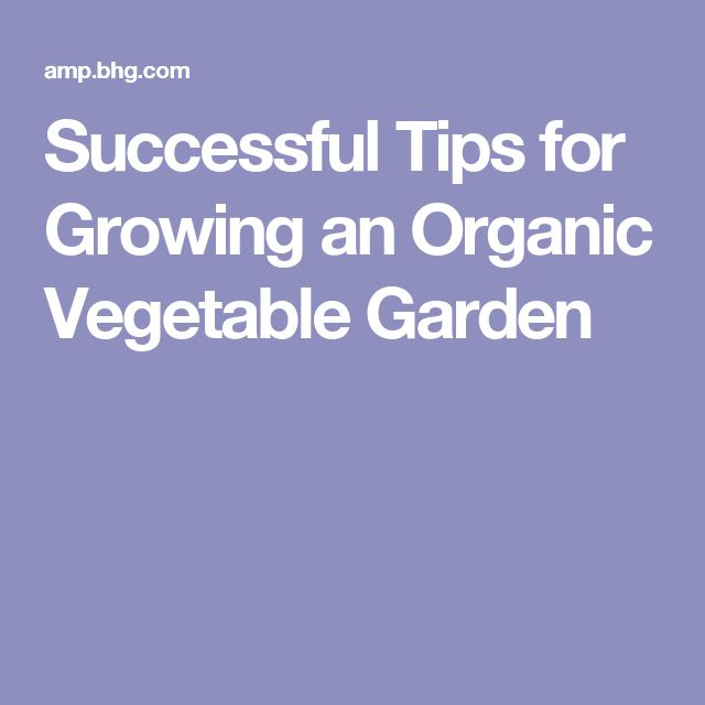 Successful Tips for Growing an Organic Vegetable Garden