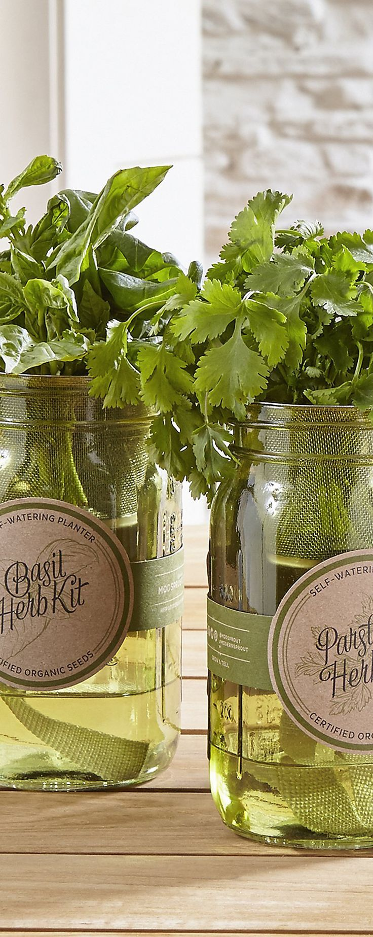 Garden Jar Herb Kit We are want to say thanks if you like
