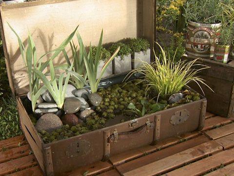 Utilisima luz en casa videos imagui for Utilisima jardineria