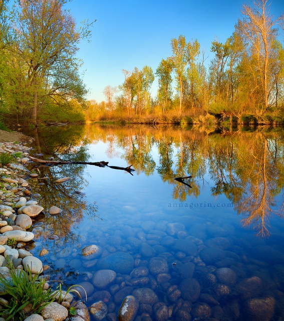 Placid waters of the Boise River