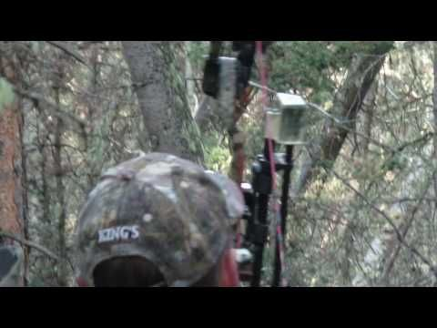 PSE Archery Kill - Elk Hunting in Colorado - http://huntingbows.co/pse-archery-kill-elk-hunting-in-colorado/