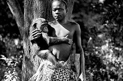 African Man Caged With Apes In New York Zoo For the Entertainment of White America | Your Black World