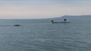 """Para os amantes do paranormal que já estão cansados de esperar pelo reaparecimento do monstro de Loch Ness, aqui está um novo """"monstro"""" filmado na Irlanda."""