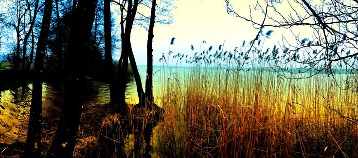 Greifensee, Foto von Ralf Rieser
