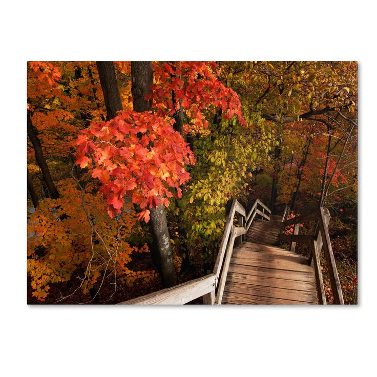 Kurt Shaffer 'Brilliant Autumn Stairway' Art