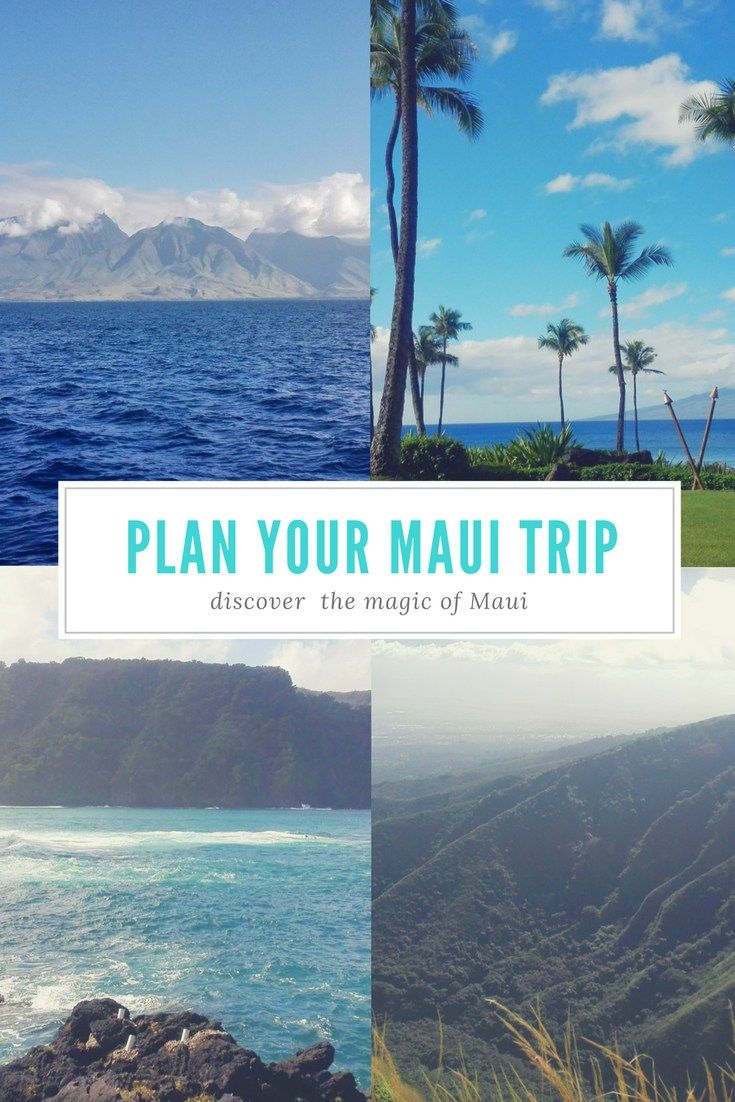 What to do in Maui!