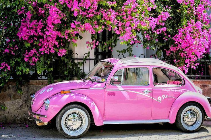 Belgin Atilkan auf Instagram: evi Kein rosa Jalousienhaus, aber ich habe das Auto gefunden. #anadolugram #nature #wenn du am Leben bist ...