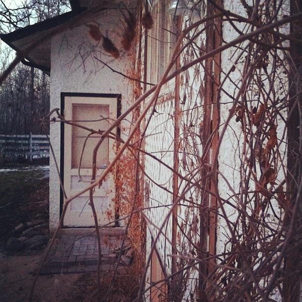 - @nediard | Webstagram  Cute little back door at my Aunties house :)