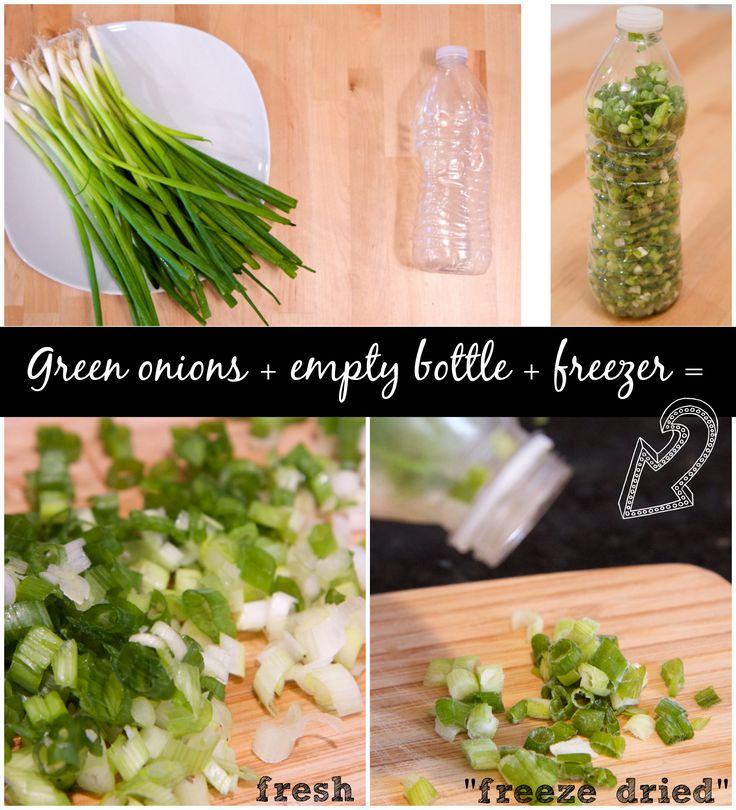 Green onions + empty water bottle + freezer = 'freeze dried' fresh AND easy topping shaker! #KitchenHack via @jeanabeena #thehacksoflife AD