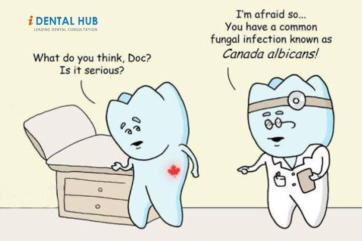 Pinterest Jokes: Dental Care @ Identalhub