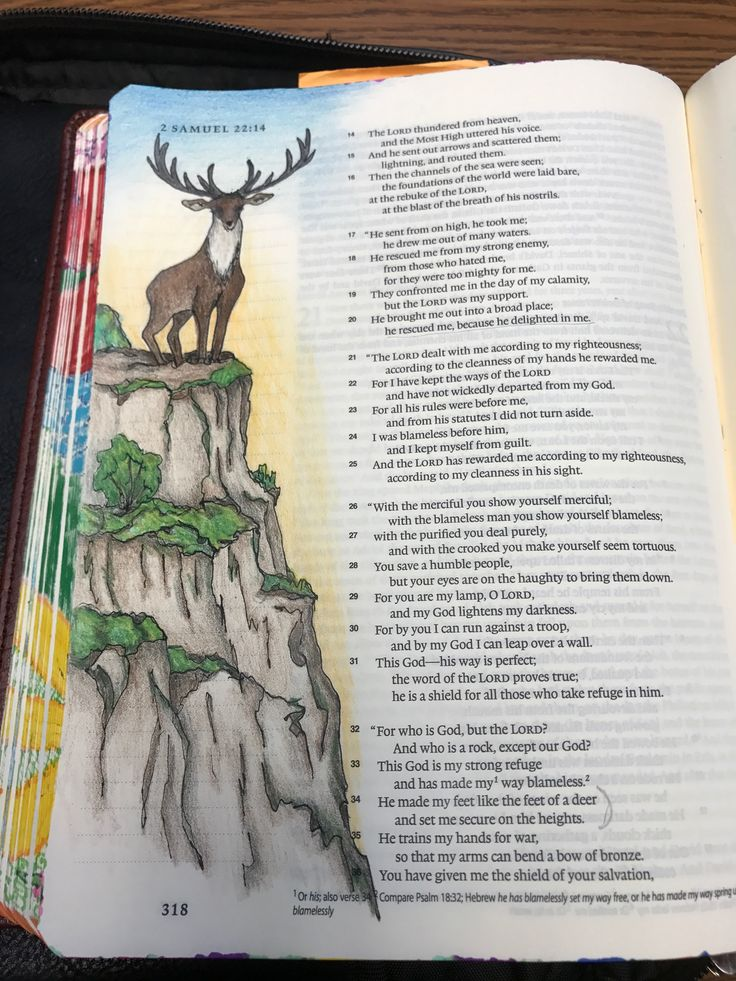1 Samuel 22:34. He made my feet like the feet of a deer and set me secure on the heights . Sherrie Bronniman: Art Journaling - In My Bible.