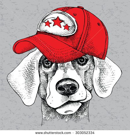 Image Portrait of a dog wearing a cap. Vector illustration. - stock vector