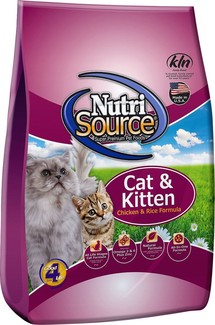 17 Best Ideas About Kitten Food On Pinterest Homemade