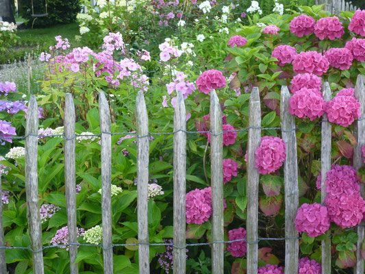Gärtnern - Staketenzaun aus Kastanienholz