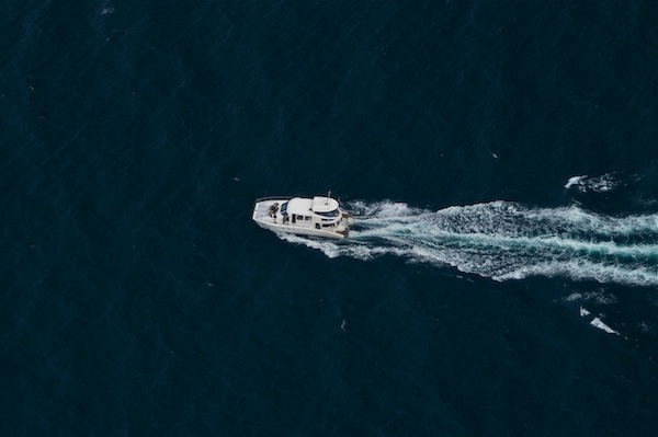 Southern Right Charters - Boat Based Whale Watching