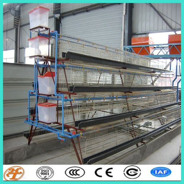 China Supplier Poultry Farming 4 Tiers Layer Chicken Cage (C108) - China design layer chicken cages;poultry farming battery chicken cages...