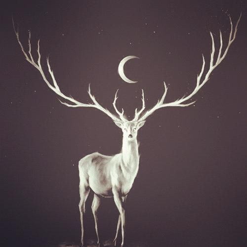 stag & moon This would make an amazing tattoo!