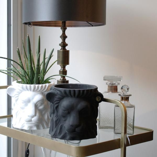 Love our lions, the perfect statement for your home.