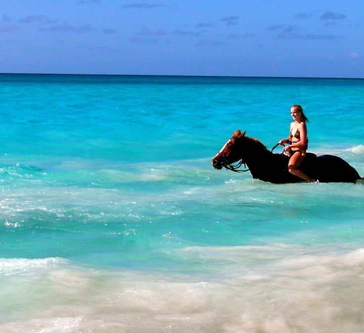 Horseback riding in the ocean, Caribbean. Just one of the things on my bucket list