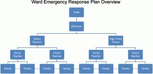Ward Emergency Response Plan Overview